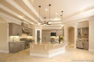 grey kitchens ideas pictures of kitchens traditional gray kitchen cabinets kitchen 3