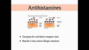 Histamine  U0026 Prostaglandins