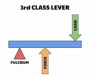 Basic Biomechanics: Levers
