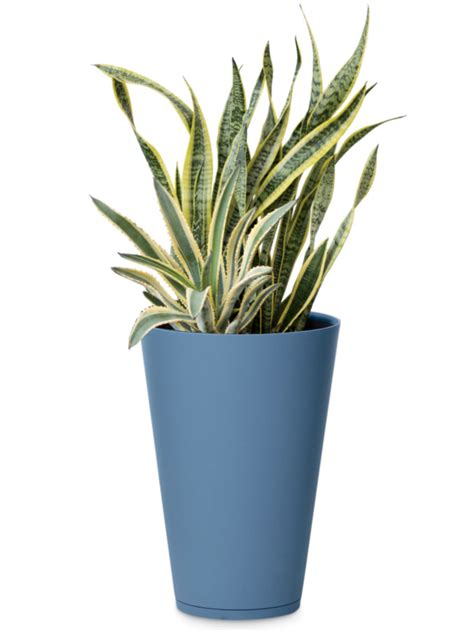 Buy Large Planters by Stackable Planters Resin Planters Stacking Planter