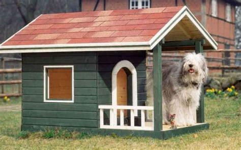 hundehuette deluxe bauen sie ihrem vierbeiner eine villa