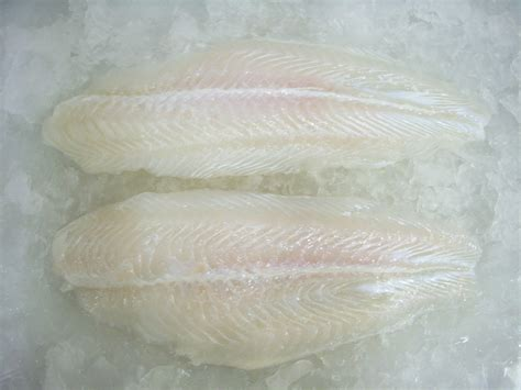 pangasius fillet frozen meat fish trimmed well pack specifications block