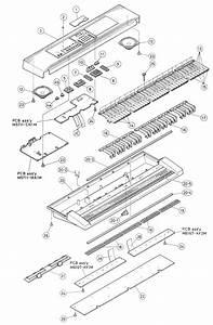 Electrotechnician  Casio Ctk