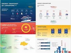 Singapore Energy Statistics 2017