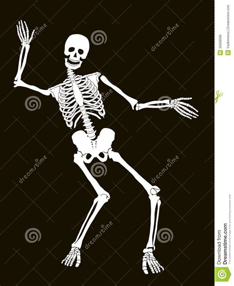 funny skeleton wallpaper wallpapersafari