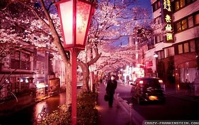Japan Night Summer Wallpapers Street Bloom Backgrounds
