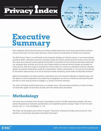 Summary Executive Example Examples Samples Privacy Proposal