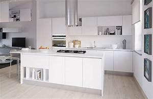 Cucina bianco viola lucido for Ikea cucine lucide