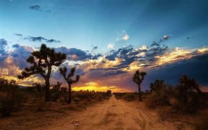 Desert Mojave Wallpapers Mx3 Brandy Butler