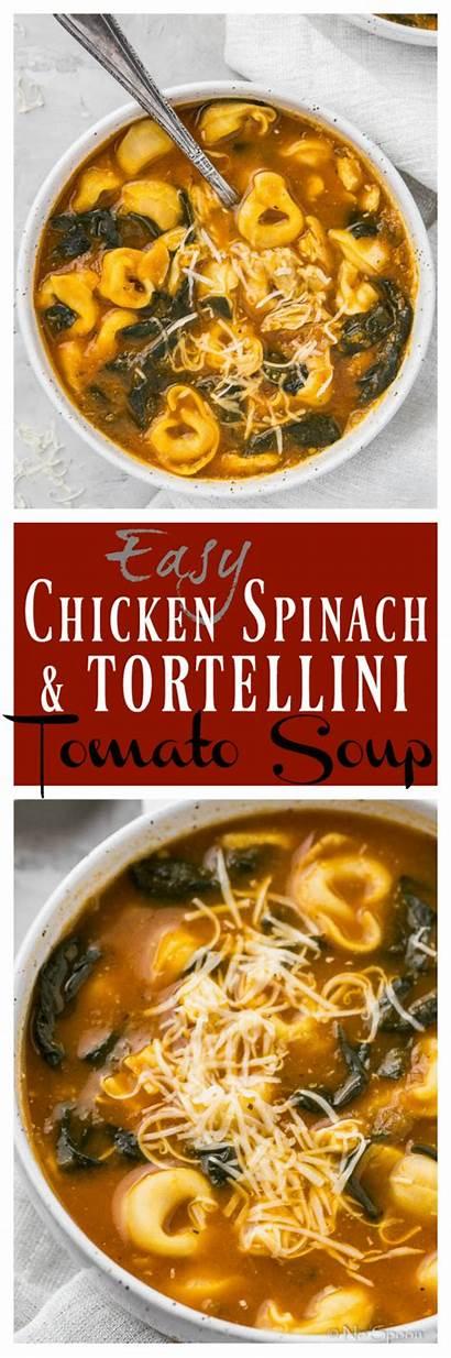 Soup Spinach Tortellini Chicken Tomato Easy Leek