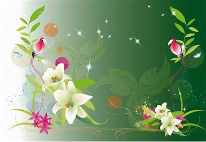 Background Flower Backgrounds Birthday Designs Graphic Cool