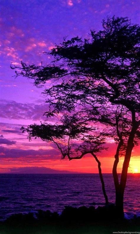 purple sunset wallpapers hd images  desktop background