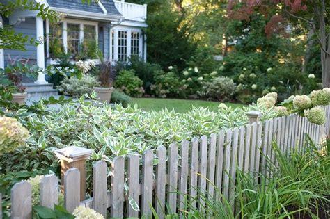 7 Möglichkeiten, Schöne Sträucher Im Garten Zu Haben