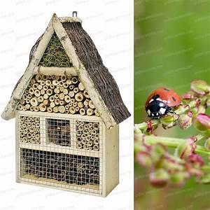 Insecte De Maison : maison gite insectes en pin et bouleau maisons abris ~ Melissatoandfro.com Idées de Décoration