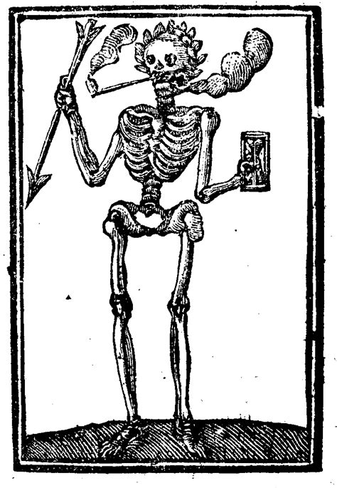 Skelets+ fakti skeletu cienītājiem - Spoki
