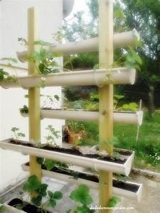 Faire Pousser Des Fraises : les 25 meilleures id es de la cat gorie plantation fraisiers sur pinterest plantation de ~ Melissatoandfro.com Idées de Décoration