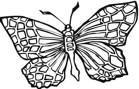 Coloring Images Of Butterflies by Butterfly Coloring Pages Bestofcoloring