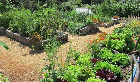 upper veggie garden horticulture centre   pacific