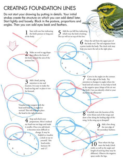 drawing birds tutorial