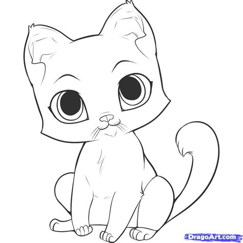 draw  easy kitten step  step pets animals
