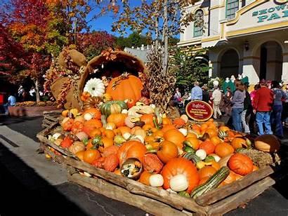 Tn Uploaded Gatlinburg Pumpkin