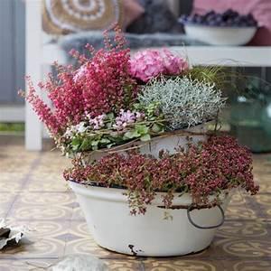 Deko Für Terrasse : romantischer herbst dekorative pflanzideen f r balkon und terrasse caro pinterest ~ Sanjose-hotels-ca.com Haus und Dekorationen