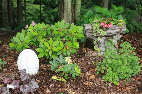 woodland gardens bed and breakfast a vintage cast iron planter tucked in the garden picture of woodland gardens bed and