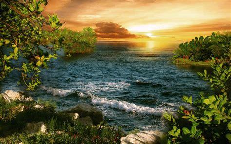 jungle  sea beach hd nature wallpapers  mobile