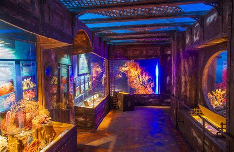 30 Jahre Aquarium Und Reptilienzoo Im Haus Der Natur