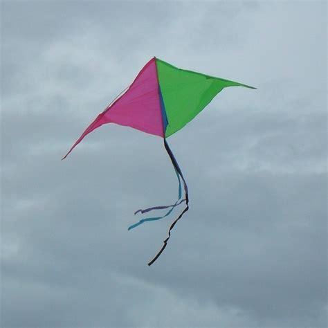 adelaide kite festival   public flying focus  time