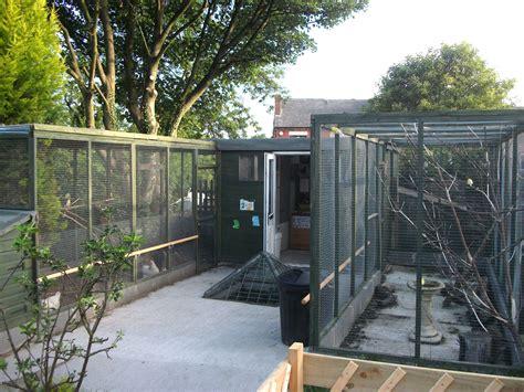 nice backyard aviary setup creations glory takes flight