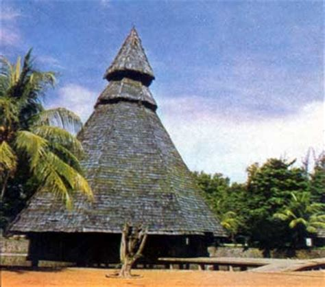 rumah adat papua suku toboti   p