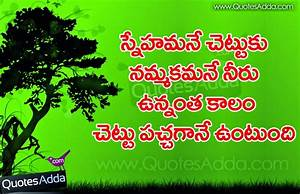 New Telugu Friendship Meaning Quotations in Telugu ...
