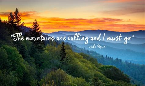 beautiful quotes  nature road trip