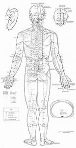 Reflexology Foot Chart Back 57 Best Acupuncture Resources Community Board Images On