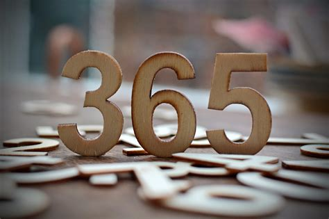 Lucy's 365 Days Ii