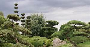 Wie Gestalte Ich Einen Garten : gestaltungstipps f r japanische g rten mein sch ner garten ~ Whattoseeinmadrid.com Haus und Dekorationen