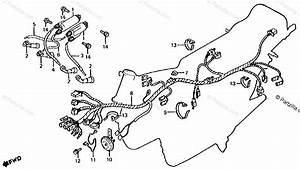 Honda Motorcycle 1981 Oem Parts Diagram For Wire Harness    Ignition    Coil