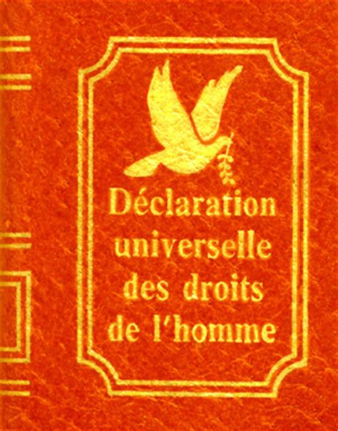 si鑒e de l onu si seulement la déclaration universelle des droits de l homme était enseignée aux citoyens regards sur le monde
