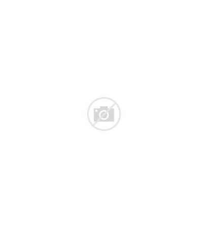 Polar M400 Hr Gps Rate Heart Monitor
