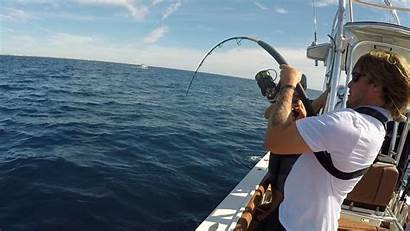 Fishing Offshore Saltwater Florida Amberjack Catching Impossible