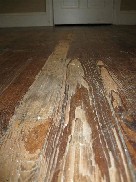 how to refinish a hardwood floor the complete manifesto