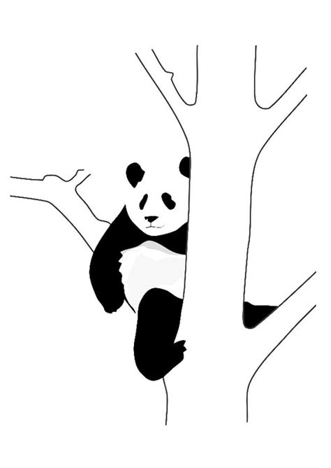 Kleurplaat Pandabeer by Kleurplaat Pandabeer In Boom Afb 19628
