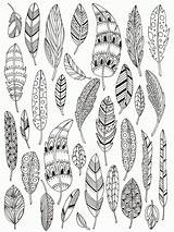Coloring Feathers Popular sketch template