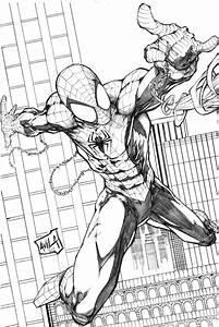 Spiderman 2013 pencils by hanzozuken on DeviantArt