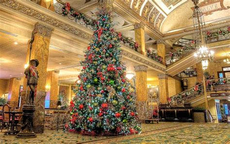 pfister hotels annual tree lighting event presented