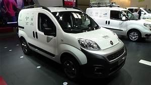 2017 Fiat Professional Fiorino Van Sx