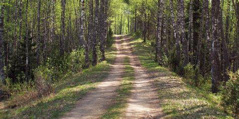 safe   trail