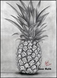 Pineapple pencil sketch - Sketching by abeer's art work in ...