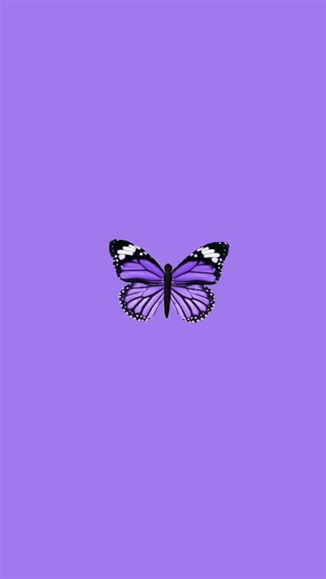 purple butterfly aesthetic wallpapers wallpaper cave